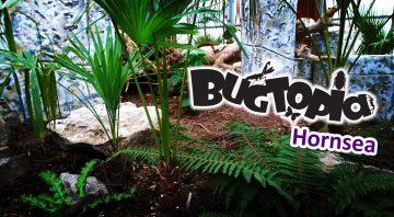 Bugtopia
